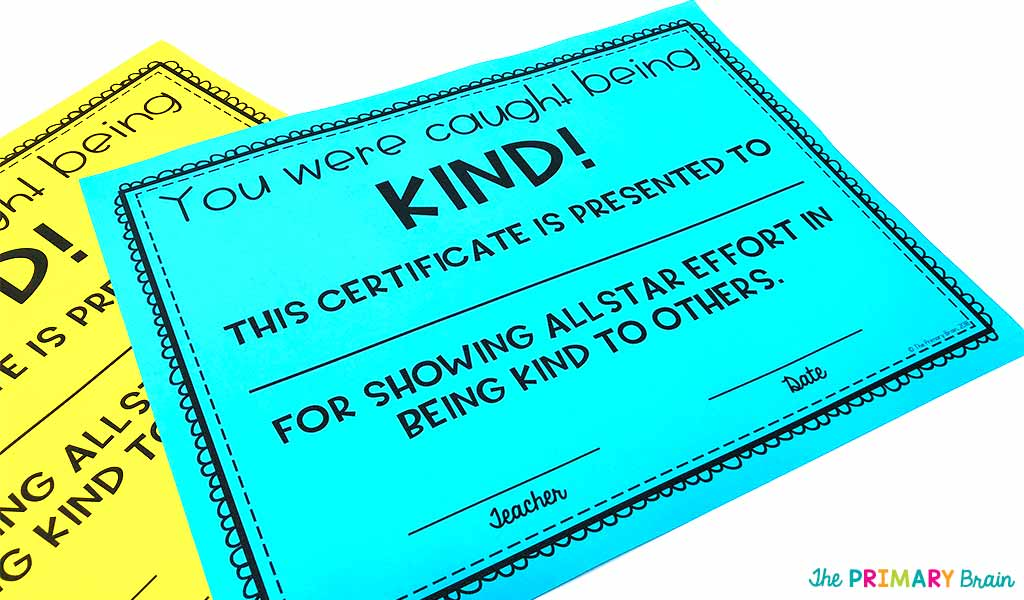 Kindness Certificate Photo