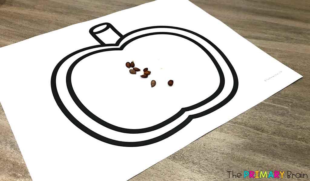 Apple Seed Craft